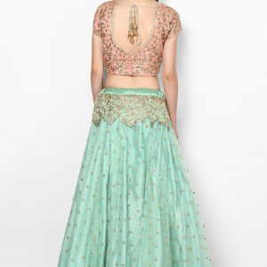 weaves-of-wonder-lehenga-back